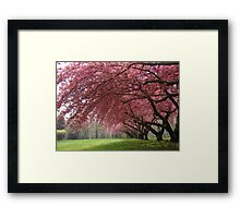 A Dream Fulfilled is a Tree of Life Framed Print