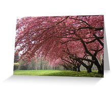 A Dream Fulfilled is a Tree of Life Greeting Card