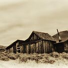 Old Home Place by Phillip M. Burrow