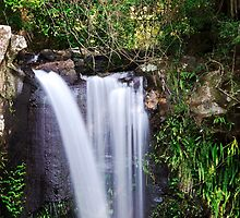 Curtis Falls waterfall by Rob D