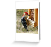 Free Lunch Greeting Card