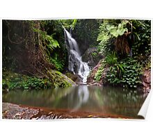 Beautiful Waterfall Poster