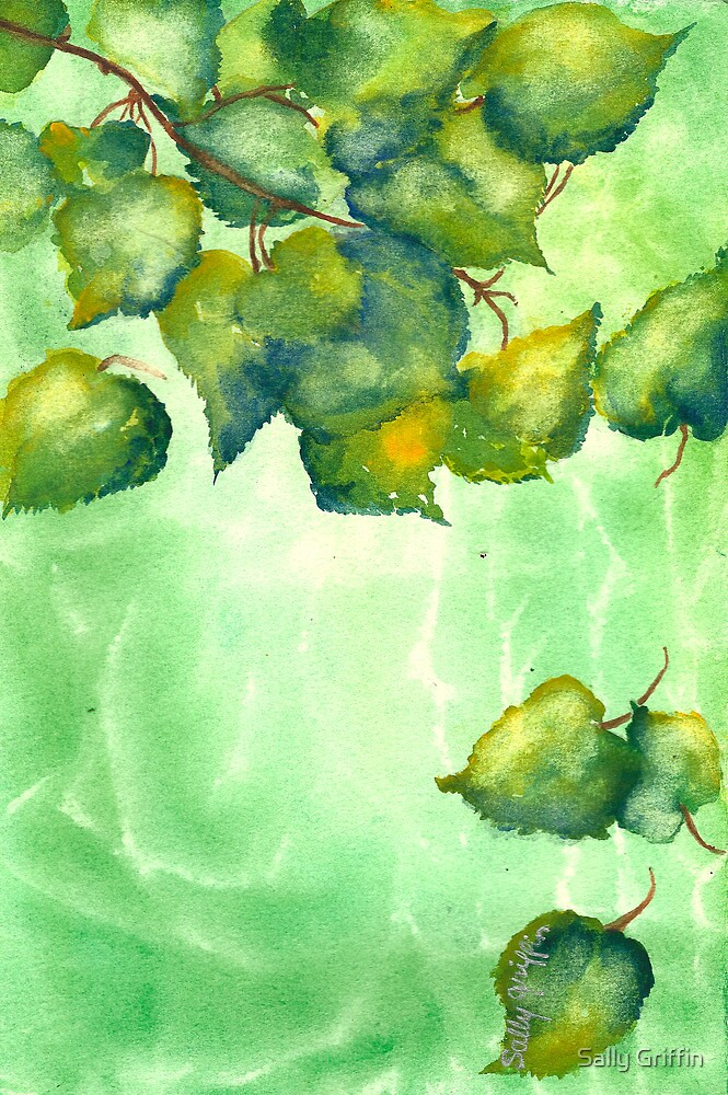 Leaves of Light by Sally Griffin
