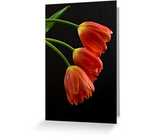 Elegance and Grace Greeting Card