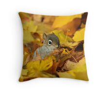 Baby Red Squirrel  Throw Pillow