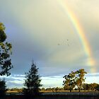 Late Afternoon Rainbow. by Julie Sleeman