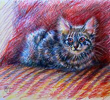"""camouflage stripes"" - kitten portrait by Deborah Green"