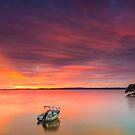 2 Boats, a Tree & a Sunrise - Cleveland Qld Australia by Beth  Wode