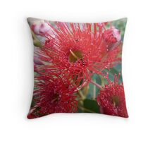 Flowering Gum. Throw Pillow