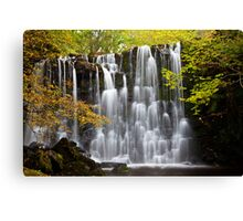 Scale Haw Waterfall, Hebdon, North Yorkshire. Canvas Print