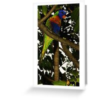 Rainbow In A Tree Greeting Card
