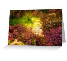 Rock Pool ~ Lyme Regis Greeting Card