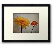 Power Flower Framed Print