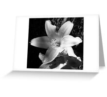Black and White Ork! Greeting Card