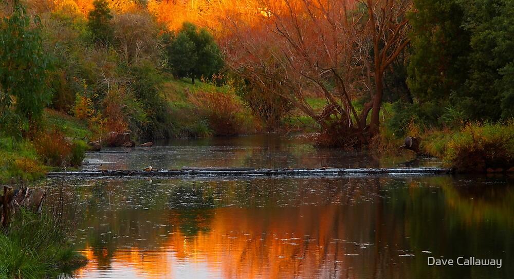 Autumn Weir by Dave Callaway