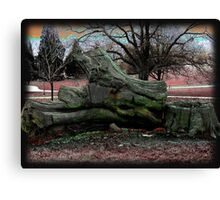 Far out and Woodstock Canvas Print