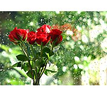 Rose in front of rain drops Photographic Print
