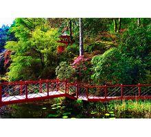 Portmeirion - Japanese garden, Wales Photographic Print