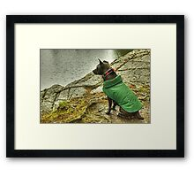 Queen Of The Lakes Framed Print