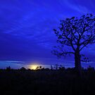 Kimberley Blue Moon. by Alwyn Simple