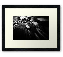Light Study Framed Print