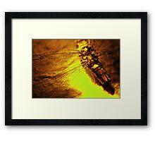 Beauty in the Breakdown - Yellow Framed Print