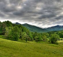North Fork by Jane Best
