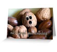 Belated Birthday Card - Nuts I forgot your birthday Greeting Card