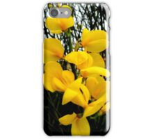 Broom Flower Beauty iPhone Case/Skin