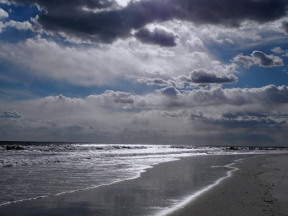 Silver Linings Skim the Sea by Lynda Lehmann