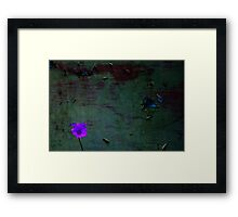 Decaying light Framed Print