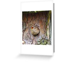 a desirable residence Greeting Card