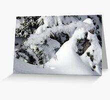 Houre Frost at Hurricane Ridge Greeting Card
