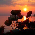 sunset in lake geneva by milena boeva