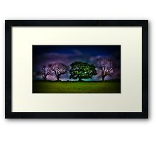 A colourful line of trees Framed Print