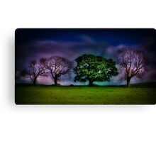 A colourful line of trees Canvas Print