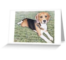 Beagle Portrait Greeting Card