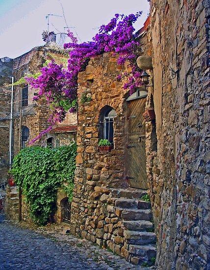 Bussana Vecchia Street by Lynda Lehmann