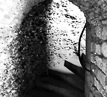 The Dark Stair by Dave Godden