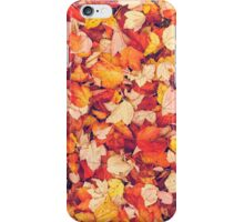 Scarlet Leaves  iPhone Case/Skin