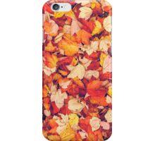 Scarlet Leaves  iPhone Case/Skin