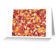 Scarlet Leaves  Greeting Card