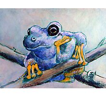 Frog Chillin Photographic Print