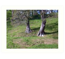 Ent walking down a hill Art Print