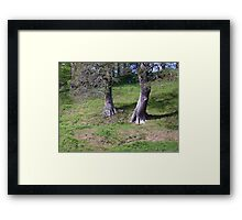 Ent walking down a hill Framed Print