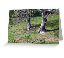 Ent walking down a hill Greeting Card