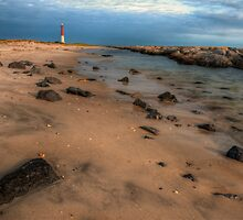 Barnegat Lighthouse State Park by Michael Mill