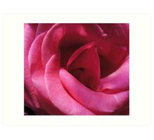 Cherry Pink Art Print