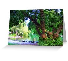Woodland Park Pond Greeting Card