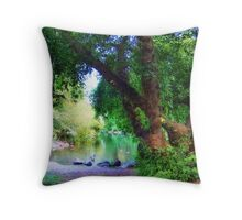 Woodland Park Pond Throw Pillow